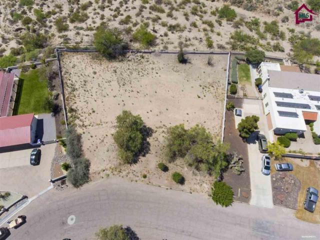 6628 Vista Hermosa, Las Cruces, NM 88007 (MLS #1701415) :: Steinborn & Associates Real Estate