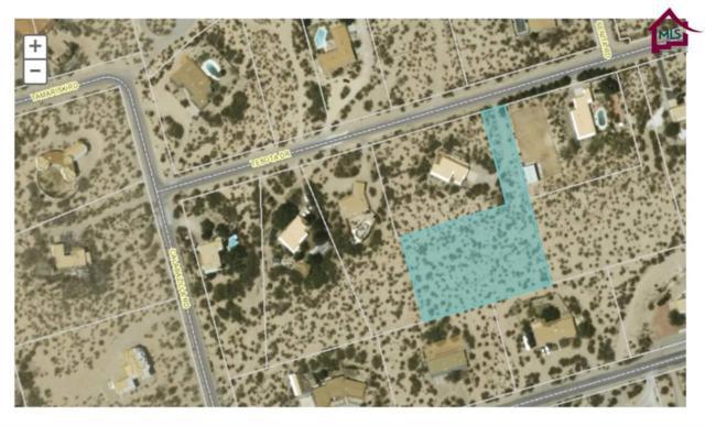 000 Tesota Drive, Las Cruces, NM 88011 (MLS #1701416) :: Steinborn & Associates Real Estate
