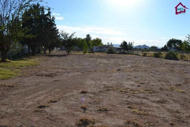 4855 Poose Creek Road, Las Cruces, NM 88011 (MLS #1701431) :: Steinborn & Associates Real Estate