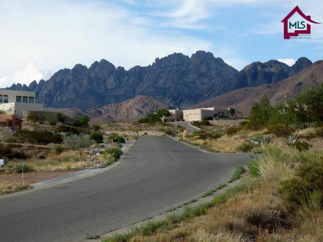 0000 Cripple Creek Road, Las Cruces, NM 88011 (MLS #1701488) :: Steinborn & Associates Real Estate