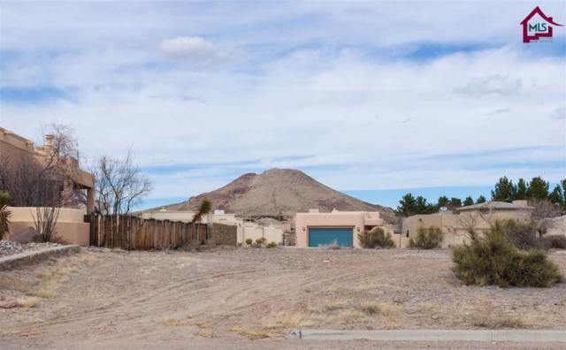 7024 Camino Nuevo Mejico, Las Cruces, NM 88007 (MLS #1701576) :: Steinborn & Associates Real Estate