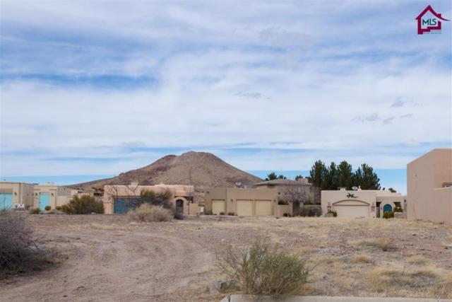 7010 Camino Nuevo Mejico, Las Cruces, NM 88007 (MLS #1701577) :: Steinborn & Associates Real Estate