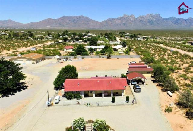 4600 Dunn Drive, Las Cruces, NM 88012 (MLS #1701704) :: Steinborn & Associates Real Estate