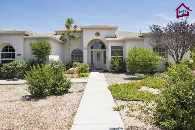 3790 Vaquero Place, Las Cruces, NM 88007 (MLS #1701772) :: Arising Group Real Estate Associates