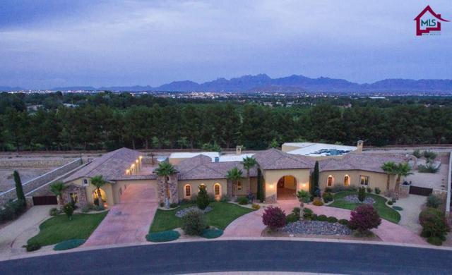 1930 Tapestry Circle, Las Cruces, NM 88005 (MLS #1701818) :: Steinborn & Associates Real Estate