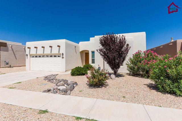 6098 Solstice Street, Las Cruces, NM 88012 (MLS #1701899) :: Steinborn & Associates Real Estate