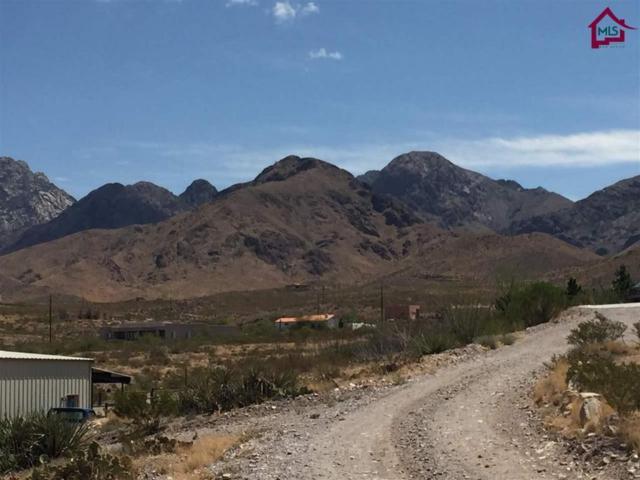 4885 Cripple Creek Road, Las Cruces, NM 88011 (MLS #1702005) :: Austin Tharp Team