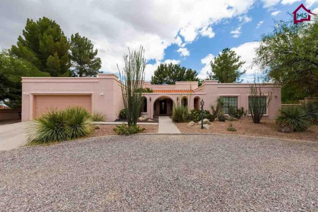 6671 Vista Hermosa, Las Cruces, NM 88007 (MLS #1702063) :: Steinborn & Associates Real Estate