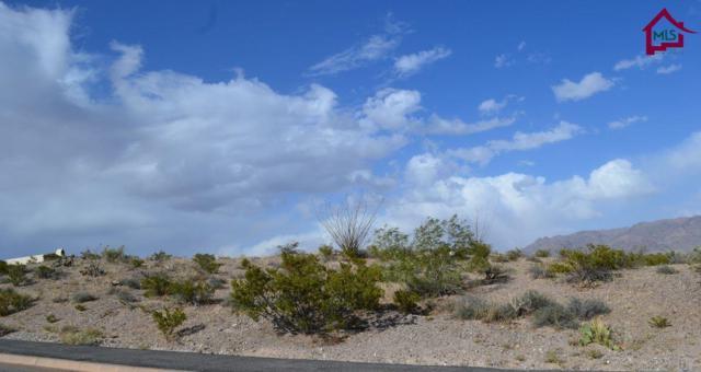 5568 Camino Escondida, Las Cruces, NM 88011 (MLS #1702112) :: Steinborn & Associates Real Estate