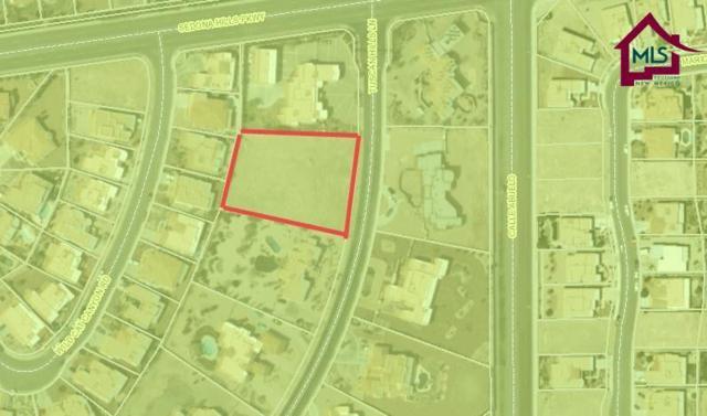 2385 Tuscan Hills Lane, Las Cruces, NM 88011 (MLS #1702116) :: Steinborn & Associates Real Estate