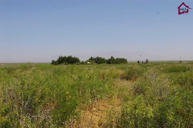 000 Quitman Road, Chaparral, NM 88081 (MLS #1702153) :: Steinborn & Associates Real Estate