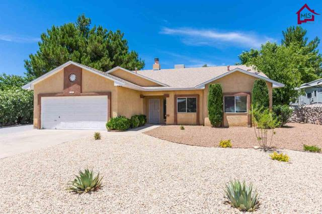 3029 Camino Real, Las Cruces, NM 88001 (MLS #1702275) :: Steinborn & Associates Real Estate