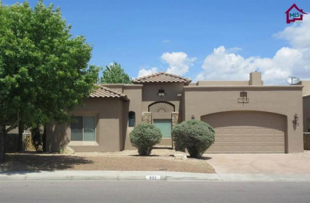 992 Flora Vista Drive, Las Cruces, NM 88007 (MLS #1702338) :: Steinborn & Associates Real Estate