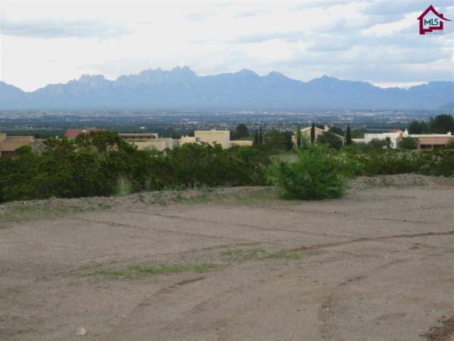 1644 Arco De Goya, Las Cruces, NM 88007 (MLS #1702342) :: Steinborn & Associates Real Estate