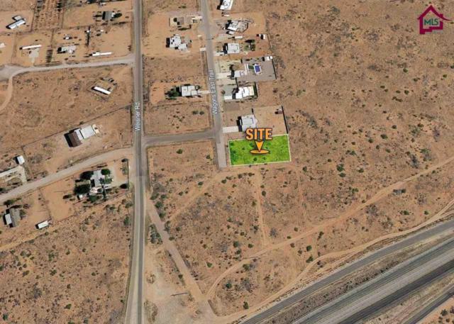 6302 Wagons Trail, Las Cruces, NM 88012 (MLS #1702393) :: Steinborn & Associates Real Estate