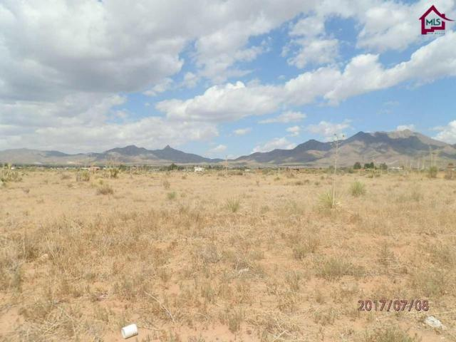 0 Jeffries Street, Las Cruces, NM 88011 (MLS #1702401) :: Steinborn & Associates Real Estate
