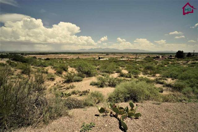 2 Acre Acre Raasaf Drive, Las Cruces, NM 88007 (MLS #1702416) :: Steinborn & Associates Real Estate