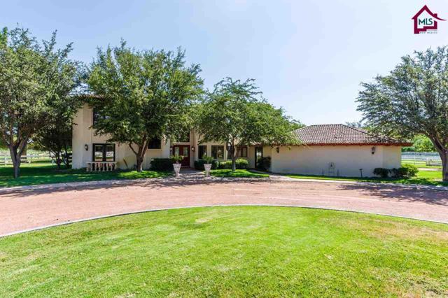 2981 Fair Lady Lane, Las Cruces, NM 88005 (MLS #1702475) :: Steinborn & Associates Real Estate