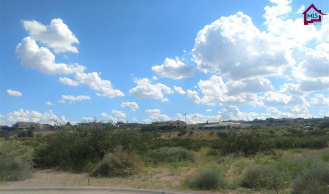 1301 Puerta Vieja Place, Las Cruces, NM 88007 (MLS #1702509) :: Steinborn & Associates Real Estate