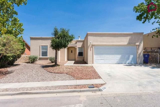 3390 Chimney Rock Road, Las Cruces, NM 88011 (MLS #1702565) :: Steinborn & Associates Real Estate