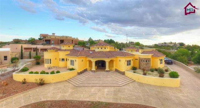 3407 Vista Primera Road, Las Cruces, NM 88011 (MLS #1702567) :: Steinborn & Associates Real Estate