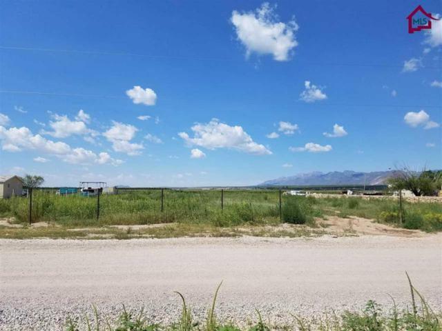 110 Cebolla Lane, Vado, NM 88072 (MLS #1702624) :: Steinborn & Associates Real Estate
