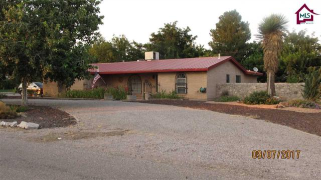 2432 San Andres Drive, Las Cruces, NM 88007 (MLS #1702634) :: Steinborn & Associates Real Estate