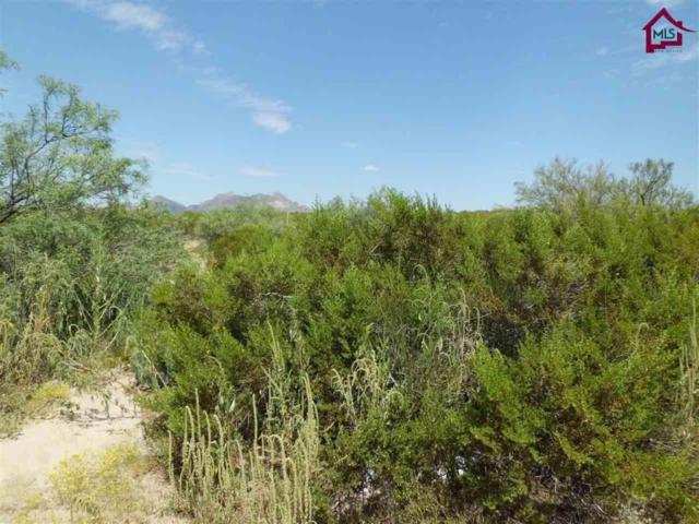 0000 Desert Wind Way, Las Cruces, NM 88012 (MLS #1702645) :: Steinborn & Associates Real Estate