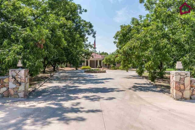 3968 Fiesta Drive, Las Cruces, NM 88005 (MLS #1702647) :: Steinborn & Associates Real Estate
