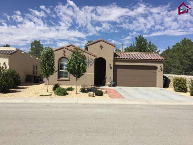 5541 Grove Drive, Sunland Park, NM 88063 (MLS #1702693) :: Steinborn & Associates Real Estate
