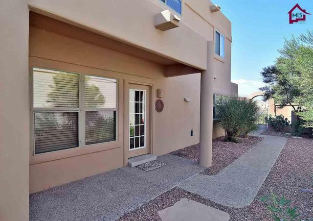 7099 Camino Nuevo Mejico, Las Cruces, NM 88007 (MLS #1702696) :: Steinborn & Associates Real Estate