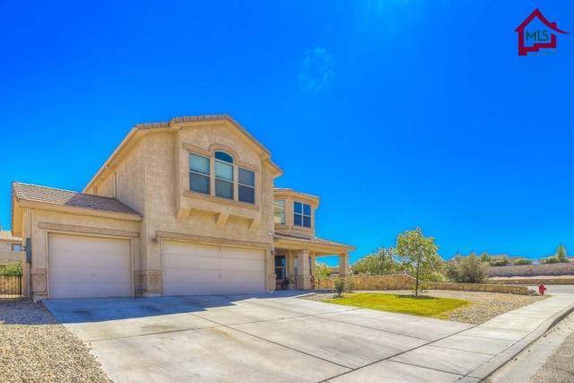 2500 Silver Hawk, Las Cruces, NM 88011 (MLS #1702787) :: Steinborn & Associates Real Estate