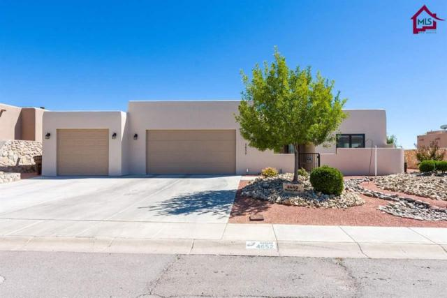 4652 Mesa Rico Drive, Las Cruces, NM 88011 (MLS #1702839) :: Steinborn & Associates Real Estate