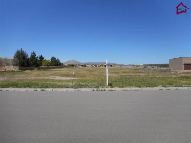 4866 Rociante Drive, Las Cruces, NM 88005 (MLS #1702861) :: Steinborn & Associates Real Estate