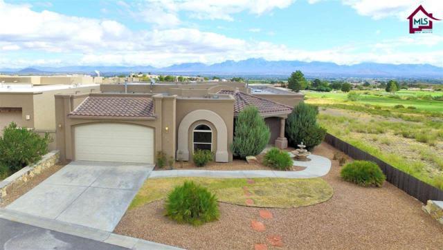 1290 Sisley Place, Las Cruces, NM 88007 (MLS #1702871) :: Steinborn & Associates Real Estate