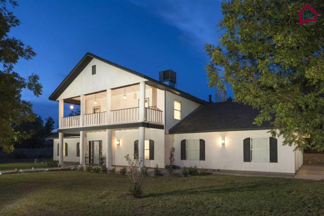 3045 Mimosa Lane, Las Cruces, NM 88001 (MLS #1702879) :: Steinborn & Associates Real Estate