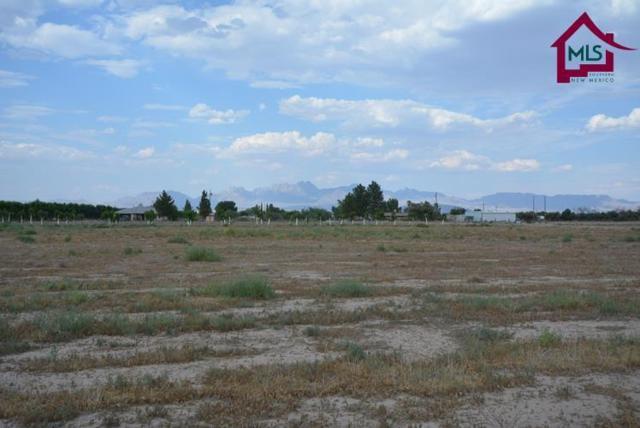 4517 Rociante Drive, Las Cruces, NM 88007 (MLS #1702901) :: Steinborn & Associates Real Estate