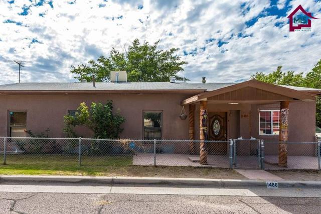 1486 E Boutz Road, Las Cruces, NM 88001 (MLS #1702907) :: Steinborn & Associates Real Estate