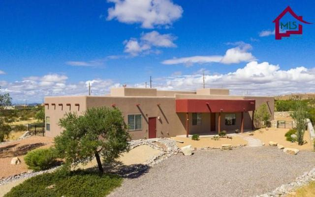 5000 Mother Lode Trail, Las Cruces, NM 88011 (MLS #1702918) :: Steinborn & Associates Real Estate