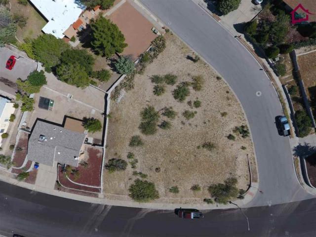 3205 Dyer Street, Las Cruces, NM 88001 (MLS #1702938) :: Steinborn & Associates Real Estate