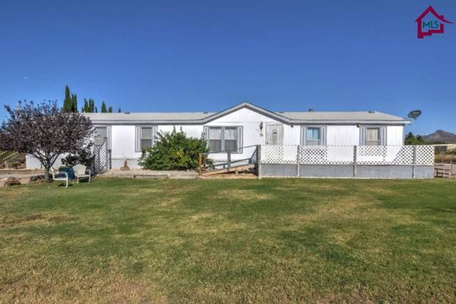 1501 Windmill Road, Las Cruces, NM 88012 (MLS #1702952) :: Steinborn & Associates Real Estate