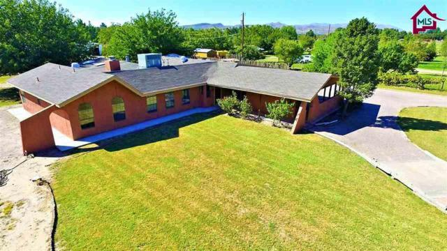4439 Sugar Sand Trail, Las Cruces, NM 88005 (MLS #1702979) :: Steinborn & Associates Real Estate