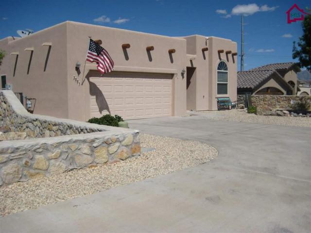 2081 San Patricio Loop, Las Cruces, NM 88011 (MLS #1702990) :: Steinborn & Associates Real Estate