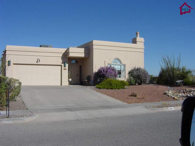 548 Canyon Point Road, Las Cruces, NM 88011 (MLS #1702995) :: Steinborn & Associates Real Estate