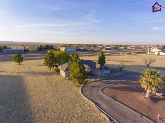 18 Cielo Del, Anthony, NM 88021 (MLS #1703010) :: Steinborn & Associates Real Estate