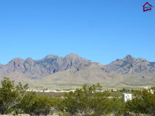Lot 156 Hembrillo Pass Road, Las Cruces, NM 88011 (MLS #1703031) :: Steinborn & Associates Real Estate