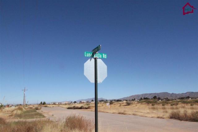 00 Luna Vista Road, Las Cruces, NM 88012 (MLS #1703055) :: Steinborn & Associates Real Estate