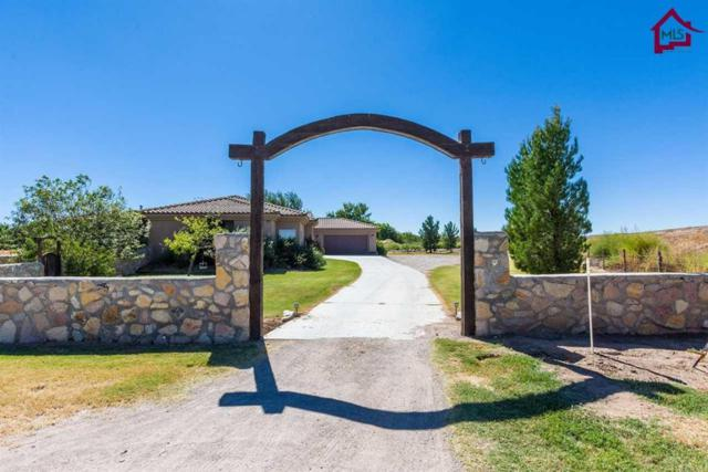 1368 Snow Road, Las Cruces, NM 88005 (MLS #1703059) :: Steinborn & Associates Real Estate