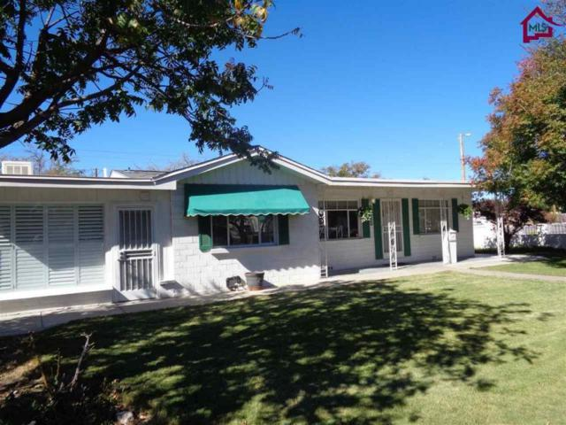 1100 S Solano Drive, Las Cruces, NM 88001 (MLS #1703088) :: Steinborn & Associates Real Estate