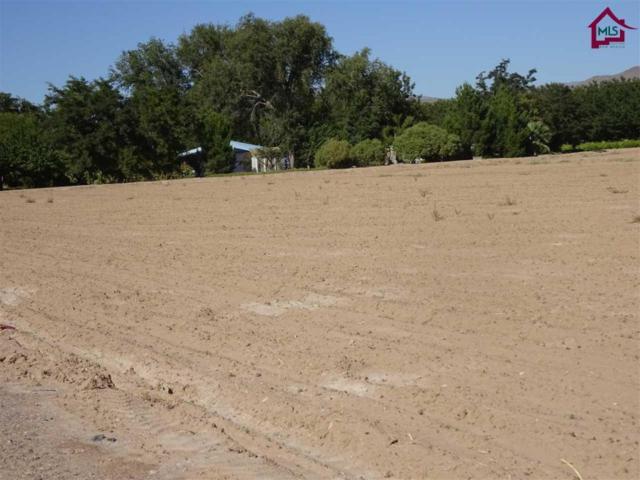 0 Walnut Grove Road, Garfield, NM 87936 (MLS #1703094) :: Steinborn & Associates Real Estate